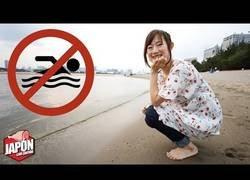 Enlace a La playa artificial de Japón que prohíbe nadar