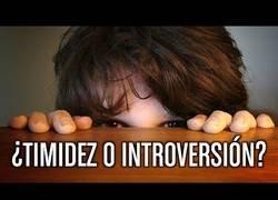 Enlace a La diferencia entre ser timidez y la introversión