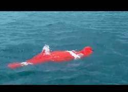 Enlace a Este tipo de 64 años ha batido el récord del Mundo nadando 3380 metros metido en una bolsa