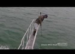 Enlace a Un gran tiburón blanco sorprende a un pescador encima de su barco