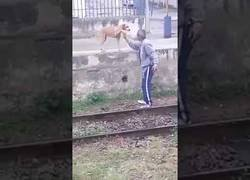Enlace a La borrachera que llevaba este tío encima que le tenía que pedir ayuda a su perro