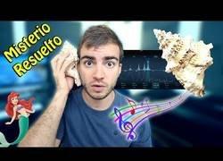 Enlace a Jaime Altozano nos explica el misterio de escuchar el mar en una caracola