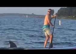 Enlace a Pura maldad haciendo la broma del tiburón teledirigido por el mar