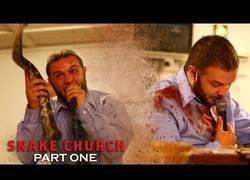 Enlace a Un pastor de la 'Iglesia de la serpiente' recibe una mordida mortal en pleno sermón (Inglés)