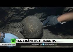 Enlace a Hallan 166 cráneos humanos en fosas comunes en Veracruz