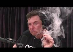 Enlace a La polémica entrevista de Elon Musk mientras fumaba maría