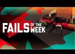 Enlace a Los fails más divertidos que pudimos disfrutar la semana pasada