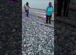Enlace a Descubren unas extrañas rocas que se iluminan con luz negra llamadas
