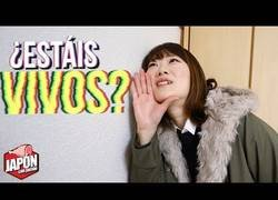 Enlace a Vecinos japoneses