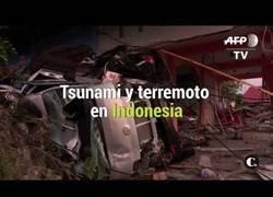 Enlace a Tsunami y Terremoto en Indonesia