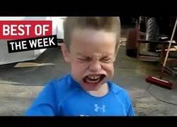 Enlace a Los mejores vídeos que nos ha dejado internet en la última semana