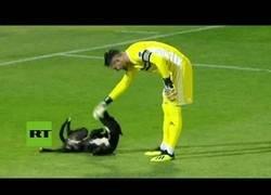 Enlace a Se estaba tranquilamente jugando un partido de fútbol hasta que un perro lo interrumpió varios minutos