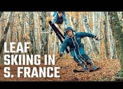 Enlace a Esquiando sobre hojas secas en el sur de Francia