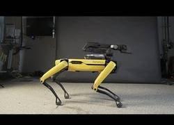 Enlace a El perro de Boston Dynamics ahora baila