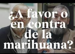Enlace a Marihuana si o no
