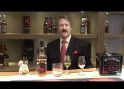 Enlace a Manual básico para beber alcohol como un auténtico señor