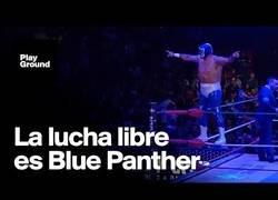 Enlace a Un homenaje a la máscara azul más famosa de la lucha libre mexicana