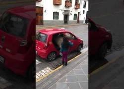Enlace a Llama se monta en un taxi