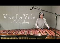 Enlace a Viva La Vida - Coldplay / Marimba cover