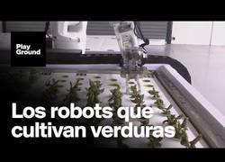 Enlace a Nueva revolución en la agricultura