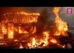 Enlace a Los daños causados por los devastadores incendios de California