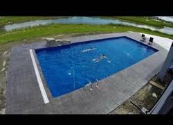 Enlace a Construcción de una piscina en timelapse
