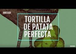 Enlace a Tortilla de patata perfecta
