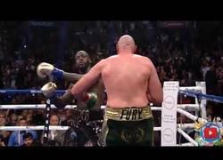 Enlace a Boxeador es knockeado pero se levanta como si nada