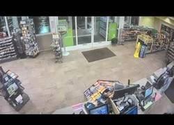 Enlace a Pareja de castores se van de compras al supermercado
