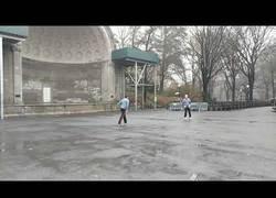 Enlace a Haciendo virguerías con el frisbee en Central Park