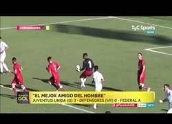 Enlace a Perro héroe salva gol del equipo contrario