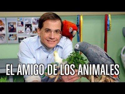 El amigo de los animales [Parodia]