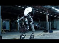Enlace a Robots tan desarrollados que dan miedo