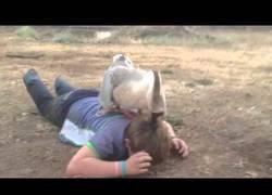 Enlace a Oca ataca a un niño