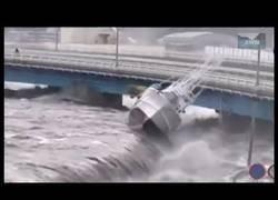 Enlace a Catastrófico tsunami en Japón
