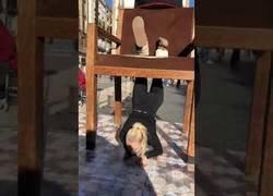 Enlace a Acróbata sufre un accidente en Barcelona