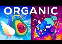 Enlace a ¿Son los alimentos orgánicos más saludables?