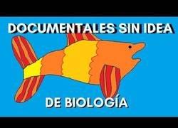 Enlace a Documentales marinos pero sin idea de biología marina
