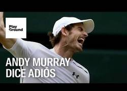 Enlace a El adiós de un gran tenista