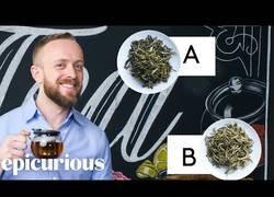 Enlace a Un experto en té prueba unos baratos y otros caros y te explica las diferencias (Inglés)