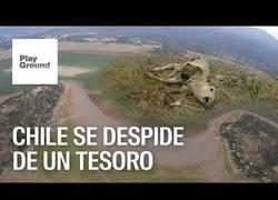 Enlace a Desastre medioambiental en Chile