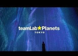 Enlace a teamLab Planets, una visita obligada en Tokyo para vivir una experiencia increíble