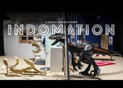 Enlace a Indomation: un corto en stop-motion