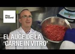 Enlace a La carne cultivada en laboratorio podría llegar a los supermercados