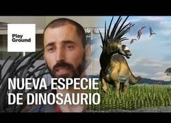 Enlace a Descubrimiento de un nuevo dinosaurio