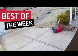 Enlace a Los mejores vídeos que hemos visto esta semana por la red