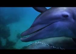 Enlace a Los delfines son unos adictos a los peces globo