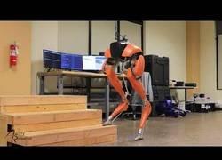 Enlace a Agility Robotics pressenta a Cassie que puede andar completamente de forma autónoma y estable