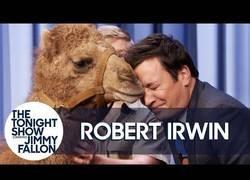 Enlace a El hijo del mítico Steve Irwin, de visita al plató de Jimmy Fallon para mostrarle varios animales