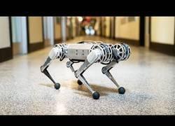 Enlace a Este robot autónomo es el primero que puede hacer un backflip